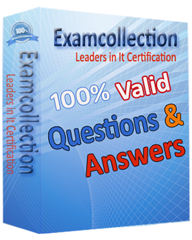 E20-495 - Content Management xCelerated Composition Platform Application Development Exam